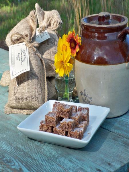 Cinnamon Oatmeal Square Baking Mix