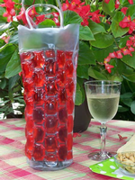 Red Chill it Wine Bag